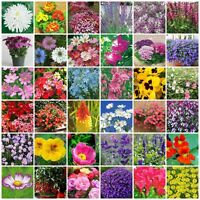 VARIETIES Perennial  Annual Flower Seeds Heirloom NON-GMO Top Quality 145-180
