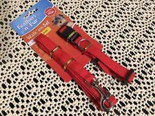 Dog lead and collar set - 24.5-40 cm adjustable collar