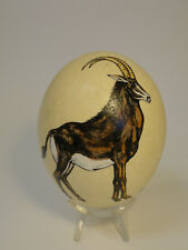 Hand Painted Ostrich Egg Sable Antelope w Stand Zc1-5