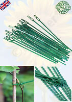 Reusable Garden Plastic Plant Cable Ties Adjustable Tree Climbing Support UK NEW