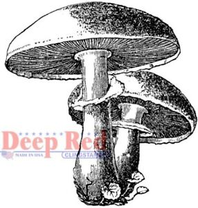 Deep Red Stamps Mushrooms Rubber Cling Stamp