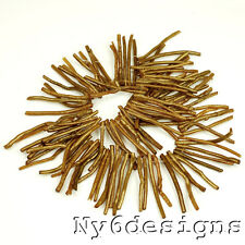 """50-60mm Gold Coral Branch Polished Beads 15"""" (CO75)b"""
