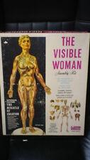 VINTAGE THE VISIBLE WOMAN BY RENWAL1960 NIB