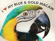 Blue & Gold Macaw Parrot Exotic Bird Vinyl Decal Bumper Sticker