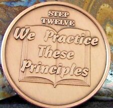 Copper Alcoholics Anonymous AA Step 12 Medallion Token Chip Coin Sobriety Sober