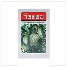 Punse ELAN none Annona cherimola Graviola pianta 15-20cm Sauer sacco rarità