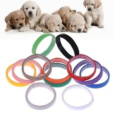 12 PCS/Set Small Pet Collar Nylon Necklace Puppy Kitten ID Identification
