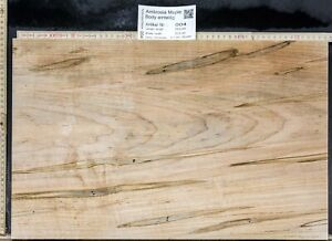 Tonewood Ambrosia Maple Tonewood Guitar Builder Blank Topset One-Part Solid Body