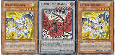 Dragon Plant Deck - Black Rose Dragon- Debris Dragon - NM - 41 Cards - Yugioh
