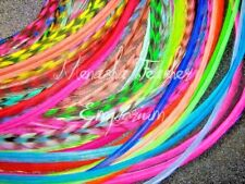 Grizzly feather hair extensions 20 Bright Mix Wholesale Whiting  saddle SALE:)
