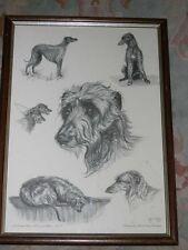 More details for rare large scottish deerhound ltd ed dog print signed kay watson nr 71/250 1993