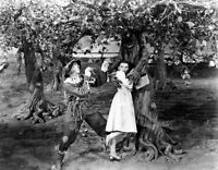 Wizard Of OZ Dorothy and Scarecrow In Haunted Forest  B/W 8x10 Glossy Photo