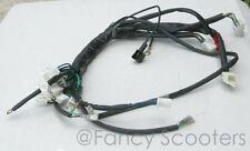 X-19 SUPER Pocket Bikes 110cc (AKA FS 549) Whole Wireharness