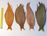 OLIVE GREEN GRIZZLY CAPE SULPHUR GRIZZLY NECK HACKLE FEATHERS ROOSTER CAPES