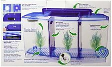 Betta Fish Aquarium Tank With Divider Filter Small Penn Plax Deluxe Triple 0.7GL