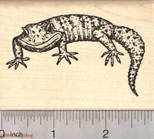 Leopard Gecko Rubber Stamp, Lizard K3118 WM