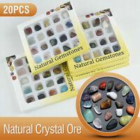 20x Mixed Crystal Gemstone Polished Healing Chakra Stone Collection Display Set
