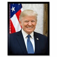 Craighead Portrait US President Donald Trump Photo Wall Art Print Framed 12x16