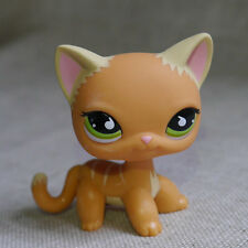 caramel brown Green Eyes Kitty Cat  LPS mini Action Figures #