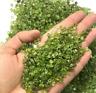 50g Natural Peridot Olivine Quartz Crystal Stone Green Rock Chip Healing Gravel