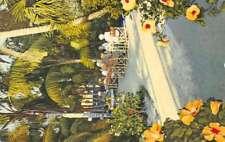 Largo Florida Palm Garden Restaurant Street View Antique Postcard K87166