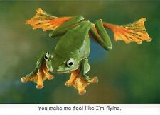 Asian Gliding Treefrog, Like I'm Flying, Funny Frog Greeting Card - Not Postcard
