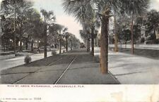 Jacksonville Florida~Main Street Homes~Above Waterworks~Trolley in Median~1905