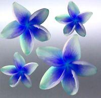 4 x frangipani Sticker vinyl cut blue and green colour local photo australian