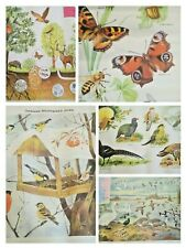 Vintage animals / insects / birds posters (21 pcs )