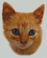 "Ginger Kitten Cat 1 Counted Cross Stitch Kit 12"" x 10"" 30.7cm x 25.4cm"