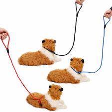 Laisse rétractable (à enrouleur) rouge pour chien
