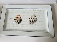 "WILLIAMS SONOMA La Mer signed Marc Lacaze 18 3/4"" Serving platter seashells"