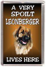 "Leonberger Dog Fridge Magnet  ""A VERY SPOILT LEONBERGER LIVES HERE"""