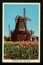 Windmills postcard Holland Michigan MI Nelis Tulip Farm Nursery chrome