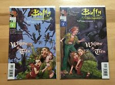 Lot of 2 Buffy: Willow And Tara Wilderness Comic Books illustrated covers