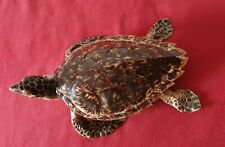Ancienne Tortue de mer caretta naturalisée îles caraïbes 41/24 cm