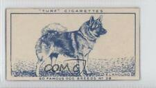 1949 Turf Famous Dog Breeds Tobacco Base #28 Elkhound Non-Sports Card 0f3