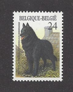 Dog Art Full Body Study Portrait Postage Stamp BELGIAN SHEEPDOG Belgium 1986 MNH