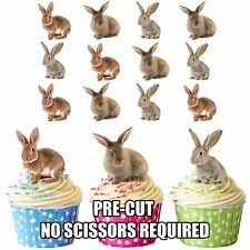 PRECUT Bunny Rabbits 12 Cupcake Toppers Birthday Cake Decorations Boys Girls