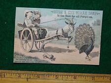 "1870s-80s Bush & Co""s Borax Soap Buggy Goat Peacock Trade Card F17"