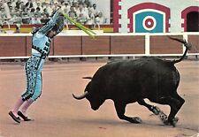 BR43682 Corrida toros bull