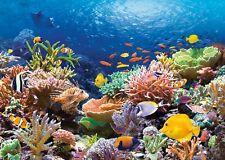 Puzzle Castorland 1000 Teile - Korallenriff (1063)