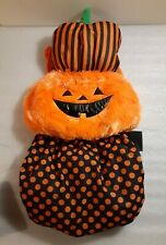 Medium Black/Orange Pumpkin Dog Halloween Costume