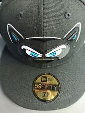 Hudson Valley Renegades new era fitted hat size 7 1/8.
