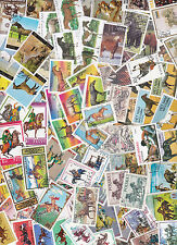 Collection 100 diff. stamps - Paarden / Horses / Pferde (Y1012.B)