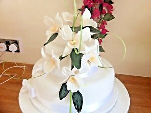 HAND MADE SUGAR  7 TRAILING  ORCHIDS  IN CREAM       New
