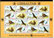 Gibraltar Fauna Aves Rapaces año 1996 (BQ-964)