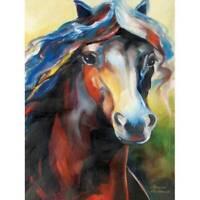 Marcia Baldwin 21054 EQUUS NINE 6x8 Canvas Horse Wall Art in Gift Box, NEW