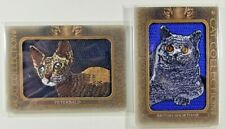 British Shorthair and Peterbald 2020 Goodwin Champions Cat Collection Patches