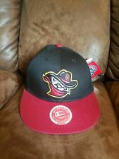 Quad City River Bandits Hat Cap YOUTH SIZE adjustable back Minor League Baseball
